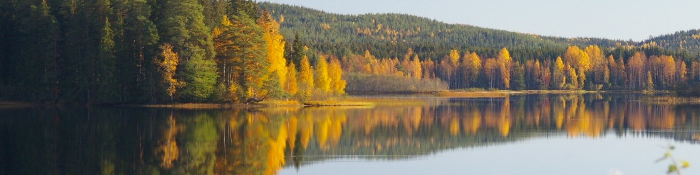 autumn view lake Sweden